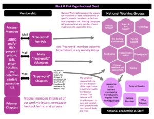 Black and Pink structure chart 2017 copy